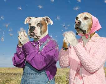 Blowin' in the Wind, funny original large photograph of Boxer dog couple dressed in vintage clothes blowing common milkweed seeds
