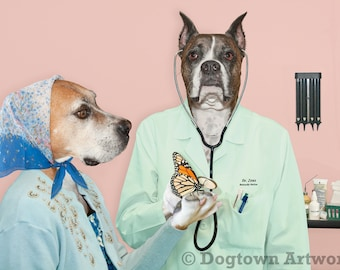 Butterfly Doctor, large original photograph of Boxer dog veterinarian doctor wearing clothes examining monarch butterfly with stethoscope