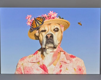 ON SALE! Watch Dog, funny large canvas wrap of Boxer dog wearing vintage pink dress as she keeps an eye on a bee. Ships free.