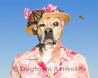 Watch Dog, funny large original photograph of a Boxer dog wearing vintage dress with monarch butterfly and honeybee
