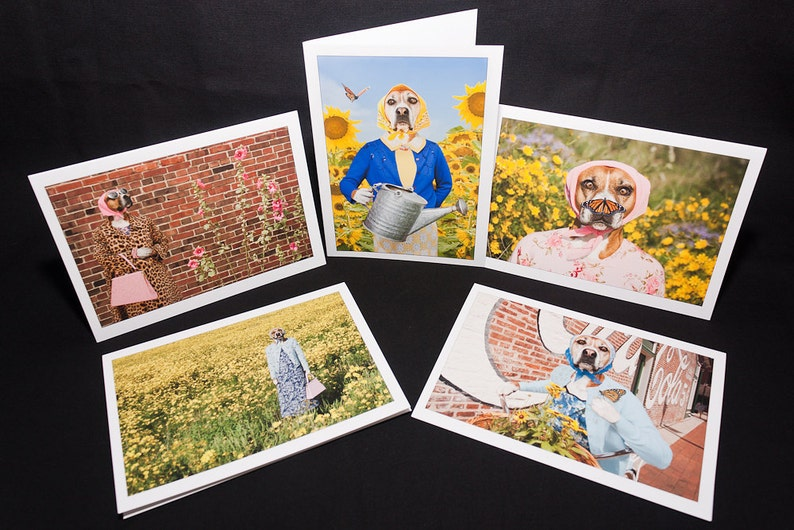 Pearl's Flowers 5 blank greeting cards of funny Boxer dog image 0