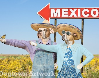 This Way to Mexico, funny large original photograph of Boxer dogs wearing vintage sombreros giving directions to monarch butterfly