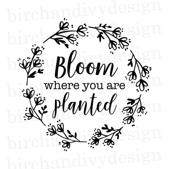 Bloom Where You Are Planted Svg File Instant Download For Etsy