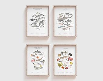 Wildlife prints FOUR FOR THREE