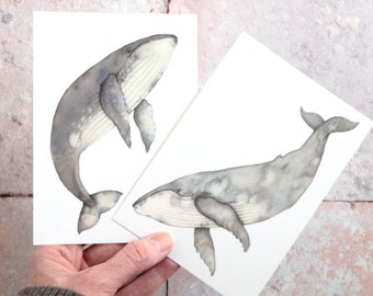 Humpback whale postcards - set of two