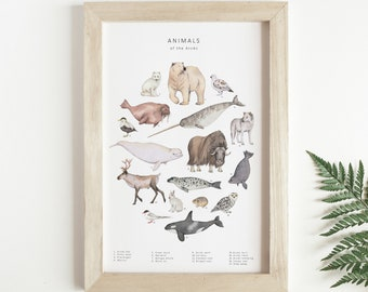 Arctic animals watercolour print