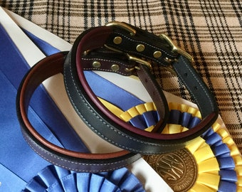 Padded Leather Dog Collar for the Horsey Set