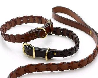 Laced Leather Sporting Collar ( w/ Custom Dog Tag )