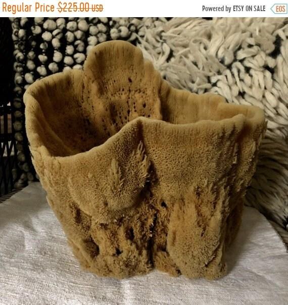SALE 50 OFF Vintage Natural Sponge