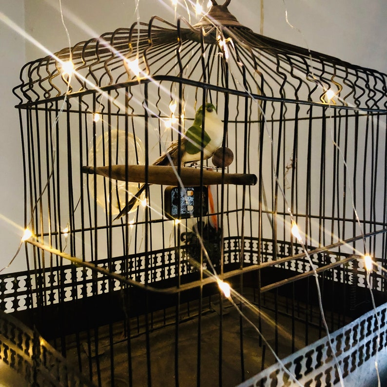 Antique Bird CageFrench  Decor image 0