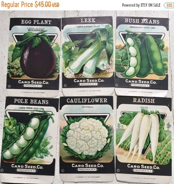 SALE 50 OFF Seed Card Co.set of 6 packets, unused no seeds.