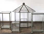 Vintage glass display case | hinged curiosity box | glass pavilion with etched flowers | hanging indoor planter | glass paneled terrarium