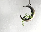 Vintage brass crescent moon hanging | Ikebana | houseplant indoor plant container | airplant holder | RARE