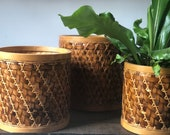 Vintage bamboo wicker houseplant basket set of three | rattan planter baskets | indoor plant | houseplants
