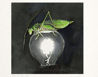 Oh Yes, She Did - Katydid - square small print