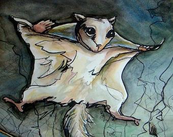 Flying Squirrel - 15x18 Original Watercolor