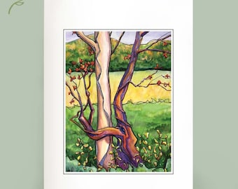 Tree Hugger - Recycled cards - Set of Six