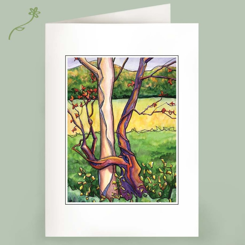 Tree Hugger  Recycled cards  Set of Six image 1