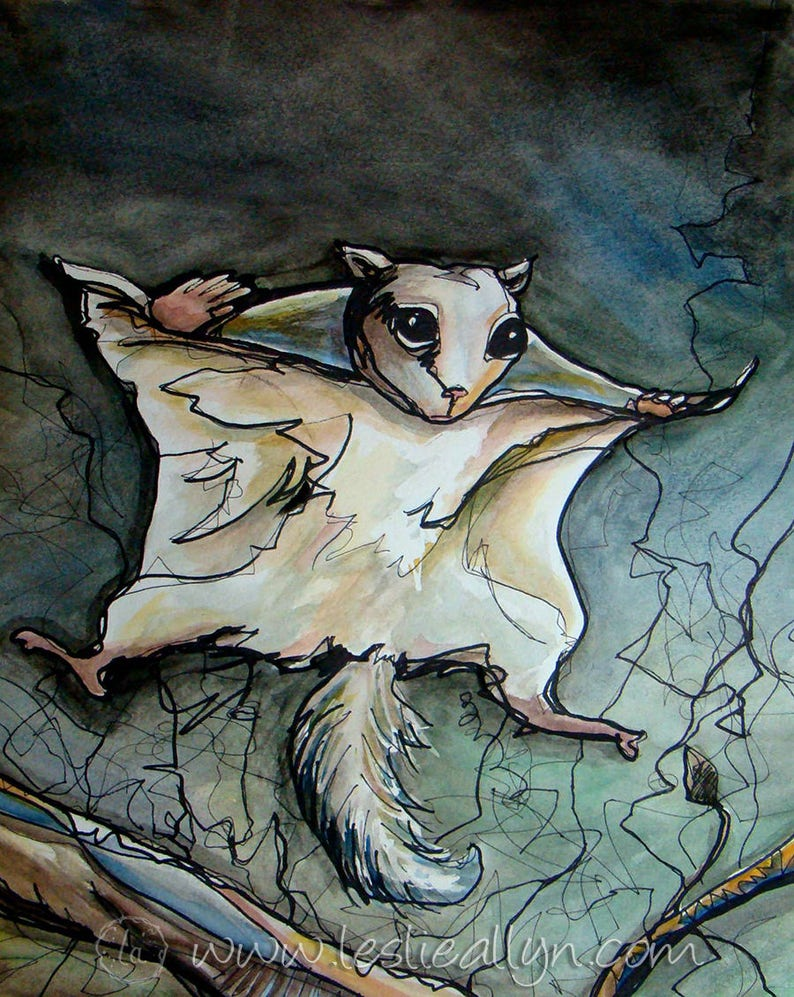 Flying Squirrel  15x18 Original Watercolor image 0