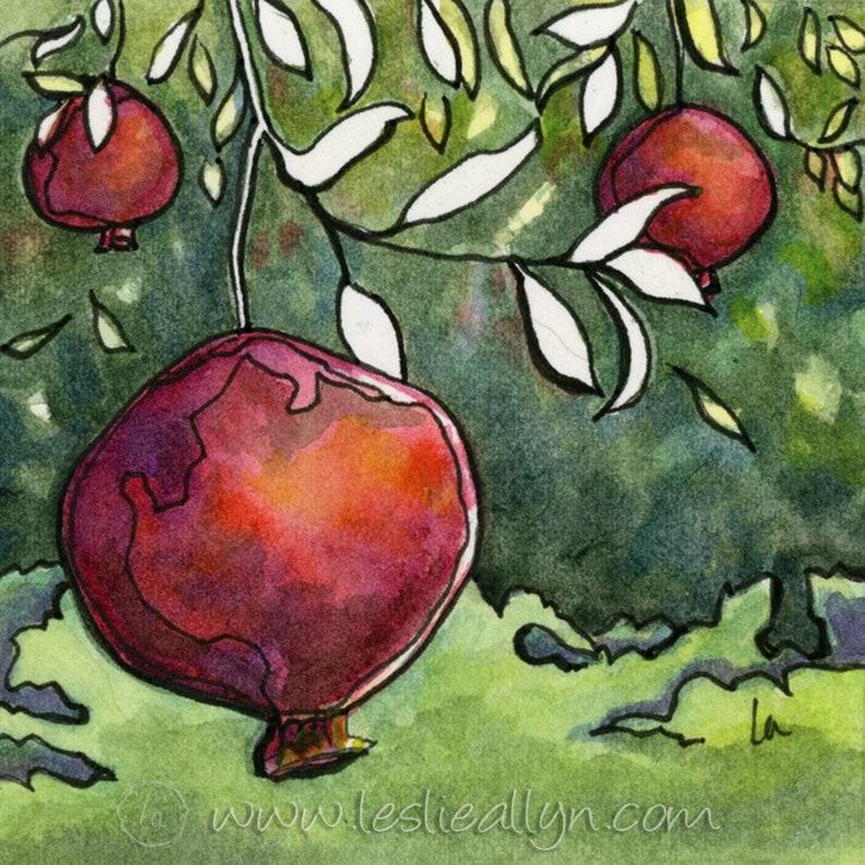 Pomegranate Harvest  6x6  Original Watercolor image 0