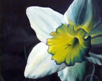 Finally Spring - Original Oil - 12x12 - Daffodil in light