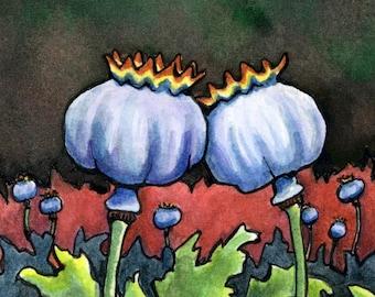 Poppy Pods - 6x6 - Original Watercolor