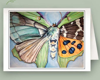 Set of 6 Note Cards - Morph