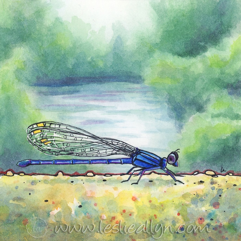 Down by the River  9x9  Damselfly Original Framed Watercolor image 0