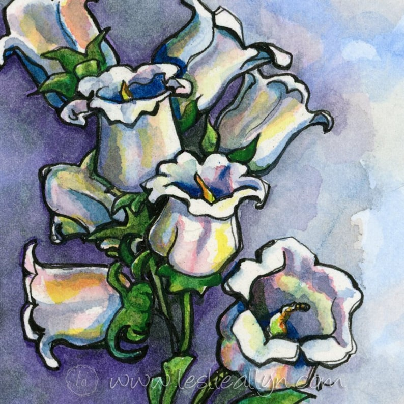 Canterbury Bells  6x6  Original Watercolor image 0