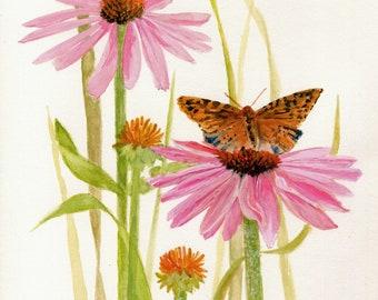 Butterfly Coneflowers Original Watercolor Botanical Nature Art