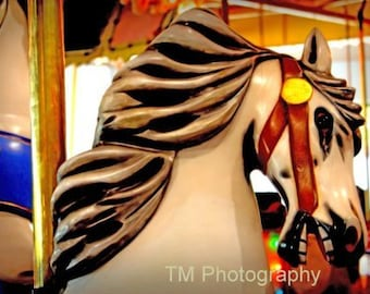 carousel, carousel photograph, carnival ride, carnival photograph, fine art photography, merry go round, merry go round horse, horse photo