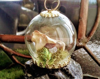 Globe Bone Terrarium With Rose Quartz Necklace