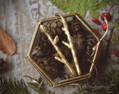 Gold Branch Bobby Pins - Tiny Twig Hair Pins in Golden Bronze - Twig Hair Clips - Gift Under 30 - Forest Mori Girl - by Woodland Belle