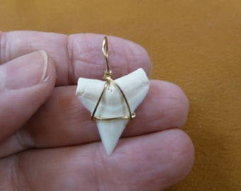 100-78  Modern Oceanic white tip shark teeth SILVER craft wired pendant sharks tooth pendants jewelry crafts craft supplies SW-1-L-4