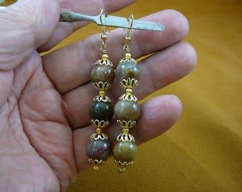 12 mm Real DINOSAUR POOP bead silver wire dangle Earrings Utah Dino Coprolite Fossil dino Weird DP1-18J