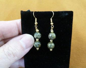 8mm Real DINOSAUR POOP two bead + gold wire dangle beaded Earrings Utah Dino Coprolite Fossil dino Weird DP1-28-4