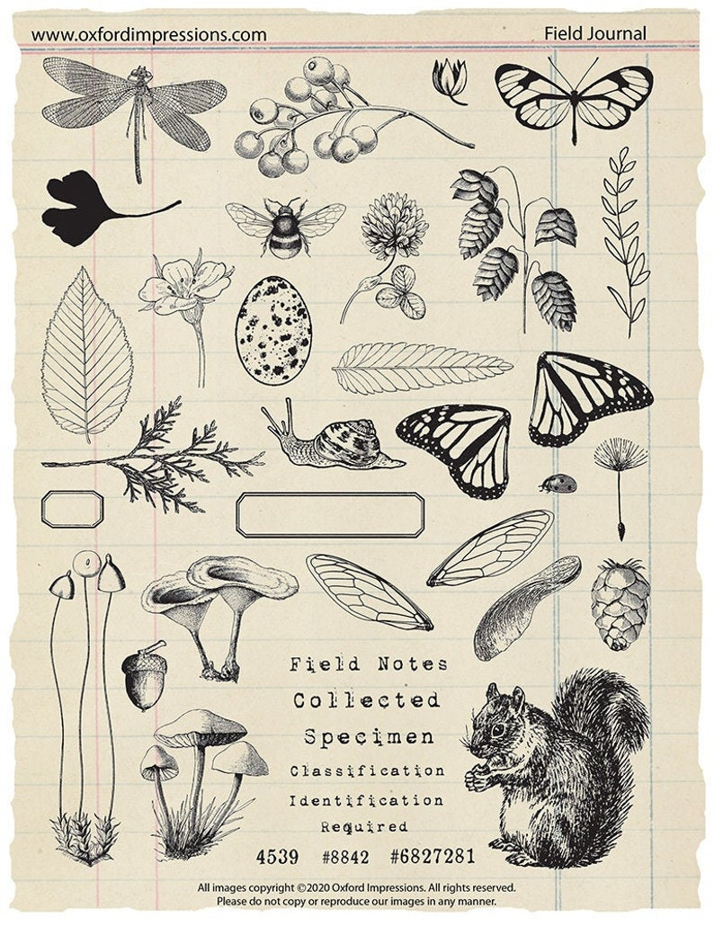 Field Journal rubber stamp collection image 0