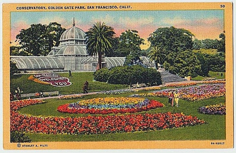 Vintage California Postcard San Francisco The Conservatory of Flowers in Golden Gate Park Unused