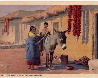 Vintage Arizona Postcard - His First Riding Lesson (Unused)