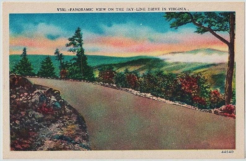 Scenic View on Skyline Drive Vintage Virginia Postcard Unused