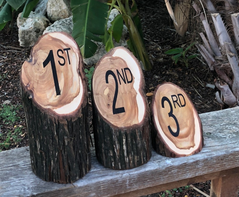 Wood Trophy Set of 3 1st 2nd 3rd place nontraditional image 0