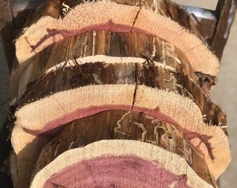 """Rustic Wood Slice, 9"""" - 12"""" wide x 2"""", Cedar Wood Piece, staghorn fern mount, plant mount, wedding decor, DIY wood, project wood"""