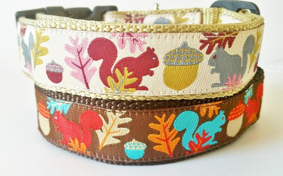 Squirrel Bait - Dog Collar / Handmade / Adjustable / Pet Accessories / Gift Idea / Pet Lover / Nuts / Fall / Leaves