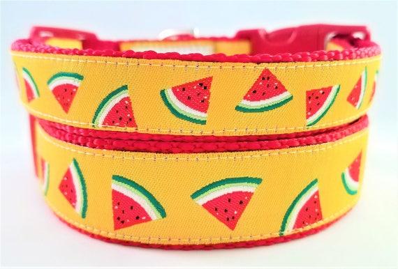 Watermelon Dog Collar, Handmade, Adjustable, Summertime, Large dog collar, Small dog collar, Pet Lover
