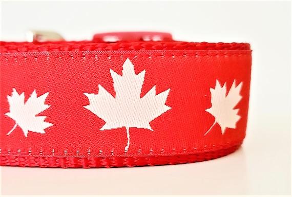 Canadian Canine Dog Collar / Adjustable / Canada / Maple Leaf / Large Dog Collar / Dog Collars / Canuck