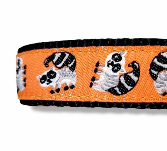 Little Trash Panda - Dog Collar / Adjustable / Dog Collar / Trash Panda / Raccoon / Small Dog Collar / Woodland / Teacup / Puppy Collar