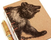 Bear Journal - Ursa Major...