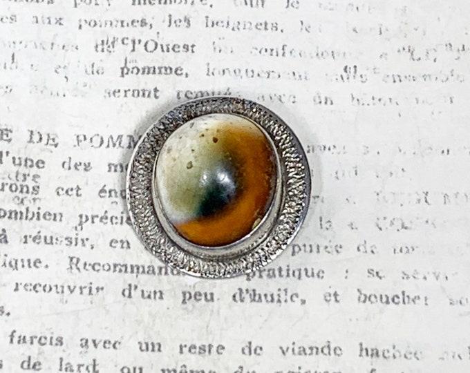 Vintage Silver Operculum Brooch