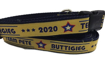 Dog Collar and Leash, Pete Buttigieg, 6ft leash, 1 inch wide, adjustable, quick release, metal buckle, chain, martingale, hybrid, nylon