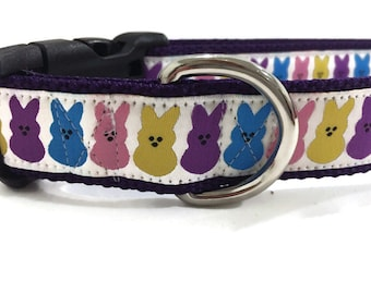 Easter Dog Collar and Leash, Bunny, 1 inch wide, 6 foot leash, adjustable, quick release, metal buckle, martingale, chain